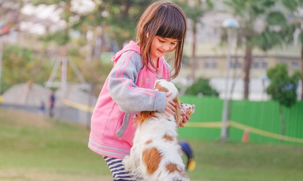 Woof TIme_Desatoro pre vycvik psa